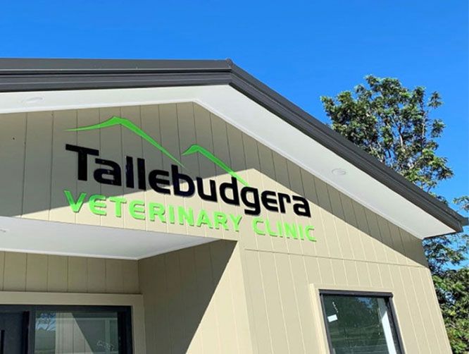 The front entrance of the Tallebudgera Veterinary Clinic at 15 Trees Road, Tallebudgera.